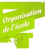 Organisation de L'école